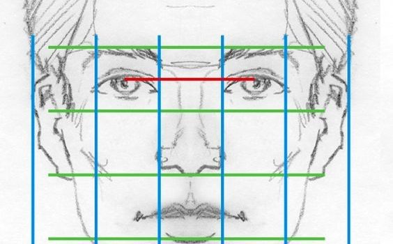 пропорций лица