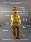 Пропорции лица и фигуры человека правило третей