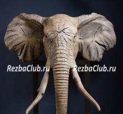 Голова слона из дерева