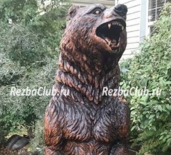 Медведь с оскалом, вставший на дыбы